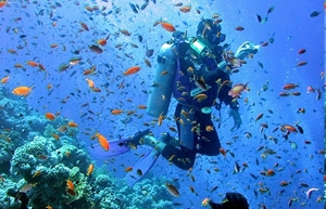 Scuba Diving Package